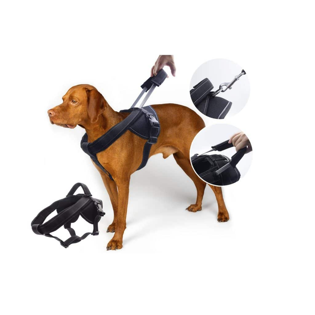YOGADOG Heavy-Duty Dog Harness with an Extended Short Leash Design