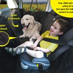 Top 10 Best Dog Car Seat Covers in 2020 | Great Product Review