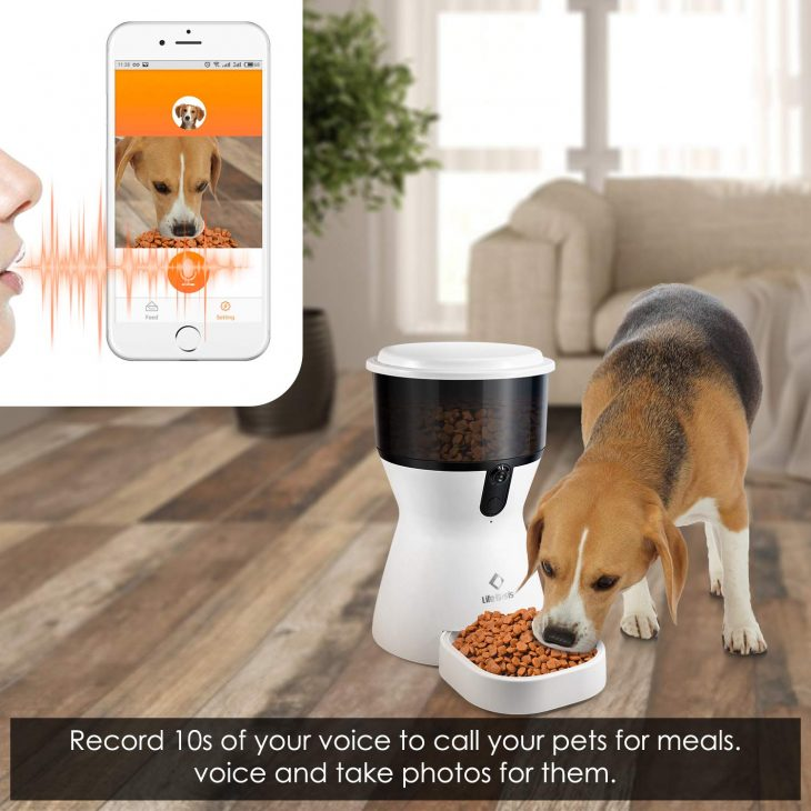 Top 10 Best Microchip Pet Feeder in 2019