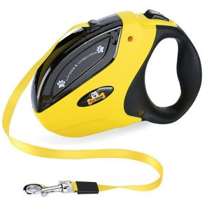 Pet Neat Retractable Dog Leash