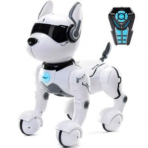 Top Race Robot Dog Toy with Remote Control