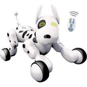 Dimple Interactive Robot with Wireless Remote Control