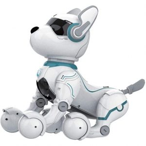 Shantan Smart Robot Dogs with Remote Control for Kids