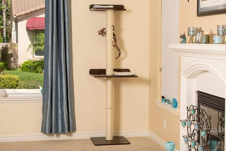 Top 10 Best Cat Activity Tree in 2020